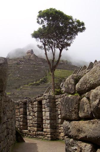Peru%2520054